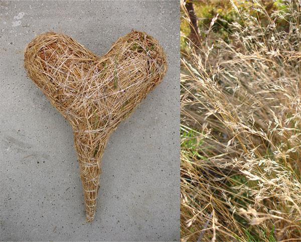 hjerte strå 1